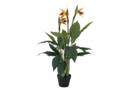 EUROPALMS Bird-of-paradise flower, artificial plant, 90cm
