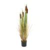 EUROPALMS Bulrush, alrtificial plant, 150cm