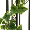 EUROPALMS Holland Ivy Garland, Premium, 180cm