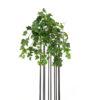 EUROPALMS Ivy Bush,  Premium, 50cm