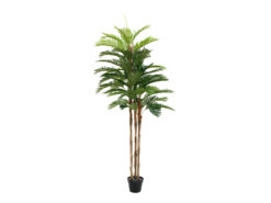 EUROPALMS Kentia palm tree, artificial plant, 180cm