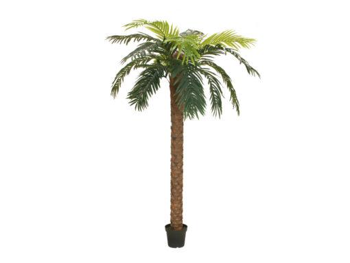 EUROPALMS Phoenix palm deluxe, artificial plant, 300cm