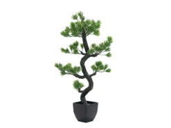 EUROPALMS Pine bonsai, artificial plant, 95cm