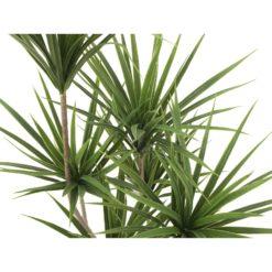 EUROPALMS Yucca palm, artificial plant, 130cm