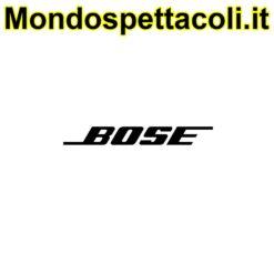 Bose Windscreen