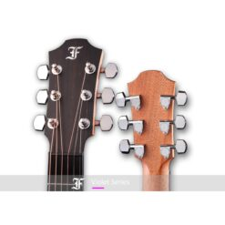 FURCH VIOLET D-SY MASTERS CHOICE SPE